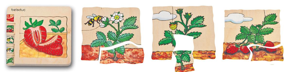 Beleduc Legespiel Erdbeere