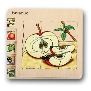 Beleduc Lagenpuzzle Apfel
