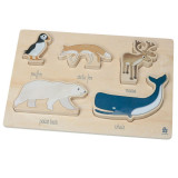 Sebra Puzzle, Arctic animals