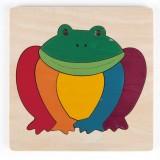 Hape Regenbogenfrosch